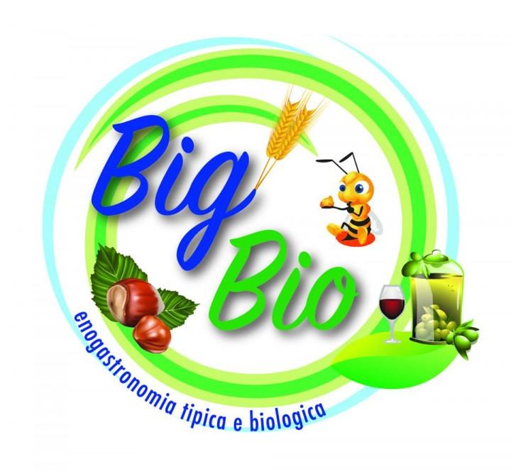 BigBio3