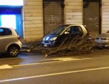 Emergenza maltempo a Roma, danni in tutta Roma e all'Appio