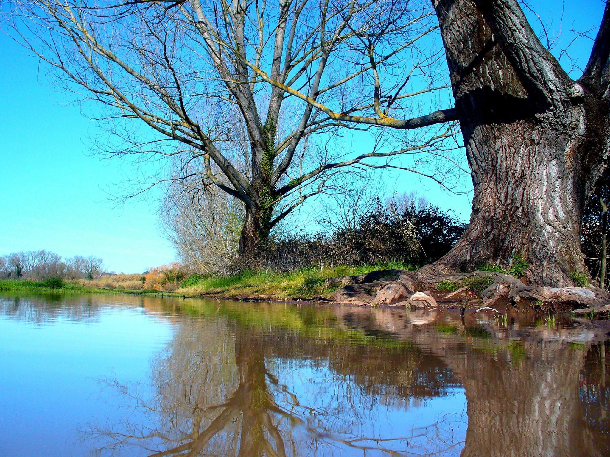 Il laghetto della caffarella appiohappioh for Il laghetto