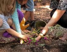 Parco degli Scipioni, piccoli giardinieri in azione