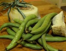 Colli Albani, fave e pecorino