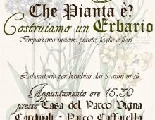 Parco della Caffarella, costruiamo un erbario