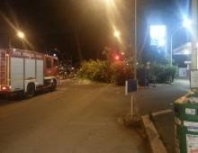 Crolla albero su via Appia Nuova, macchine danneggiate