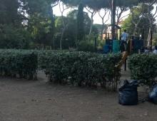 Parco degli Scipioni, ancora un intervento dei volontari del Comitato