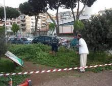 """Appello dal Comitato della Caffarella: """"Sabato 17 ripuliamo via Latina"""""""