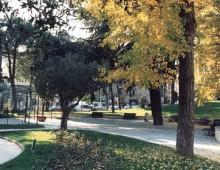 Pulizia di Villa Fiorelli: ok, ma altrove?