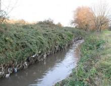Sversavano acque inquinate nel Parco della Caffarella, 10 indagati