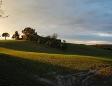 Appia Antica: il sentiero dell'Olivetaccia