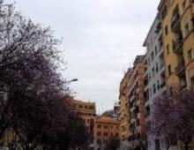 Spazio di via Cesena: tante passerelle ma continua a regnare il degrado
