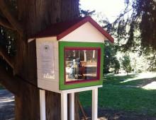 """Parco degli Scipioni: inaugurata la prima """"little free library"""""""