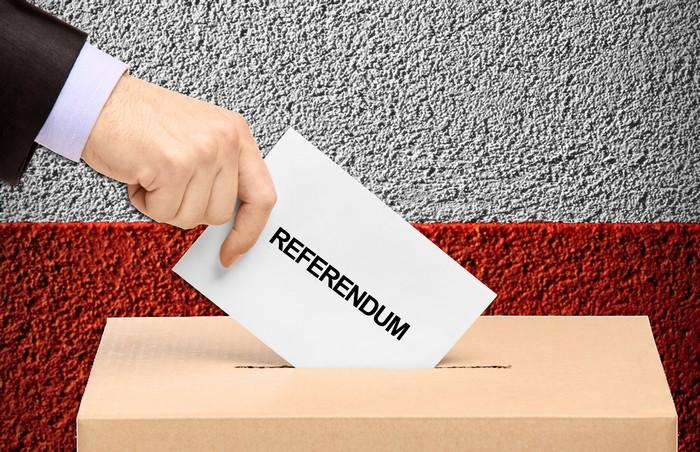 referendum3