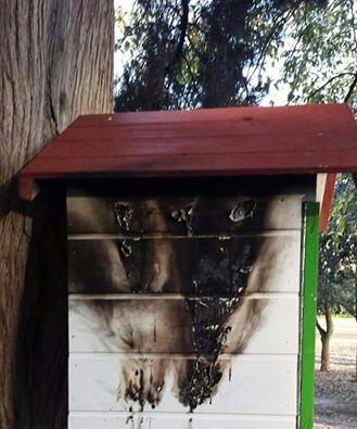 casetta libri parco degli scipioni