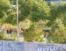 Via Cilicia: cominciato lo sgombero di un insediamento Rom