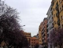 Via Urbino: sventato tentativo di furto
