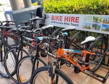 Caffarella: visita guidata in bici