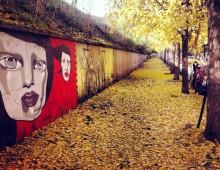 """Trekking urbano """"Dagli Acquedotti al Quadraro"""""""