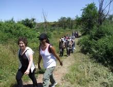 Parco Appia Antica:  Servizio civile, si cercano 6 giovani volontari