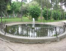 Villa Celimontana: vandali uccidono una carpa nella fontana, le altre spostate nel Bioparco