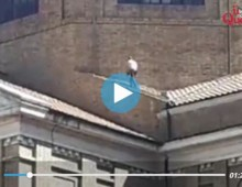 [Video] – S.Maria Ausiliatrice: si lavora sul tetto senza nessuna protezione