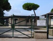 """Scuola Parco degli Acquedotti: ci sono le volpi, 900 bambini """"prigionieri"""""""