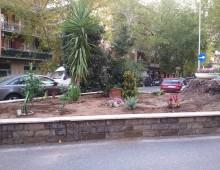Piazza Roselle : adottata l'aiuola da residenti e negozianti