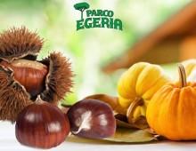 Parco Egeria: Sagra della Castagna e della Zucca