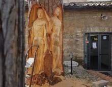 Appia Antica: le sculture sui tronchi di Andrea Gandini