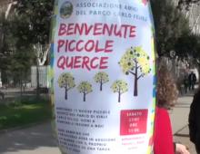Parco di via Carlo Felice, i bimbi adottano 11 piccole querce