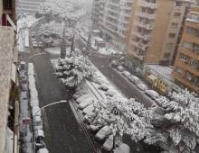 L'Appio si risveglia imbiancato dalla neve: atmosfera incantata e suggestiva