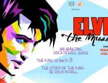 Al teatro Brancaccio arriva il musical su Elvis