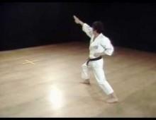 Appio, maestro di karate arrestato per violenza su un'allieva