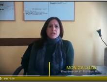 [Video] Taglio degli alberi su via Appia: il Presidente del Municipio risponde