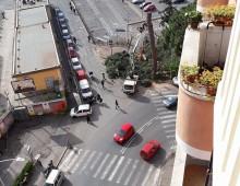 Stazione Tuscolana: continua la strage degli alberi
