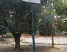 Villa Fiorelli: La triste fine del parco botanico con le vie intitolate a giornalisti
