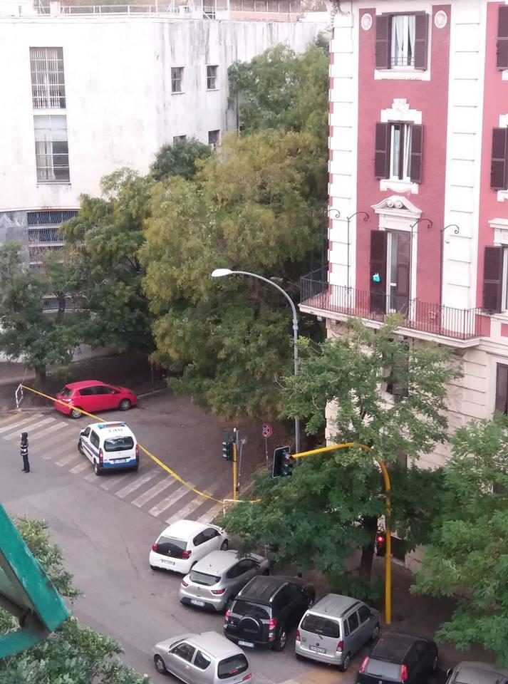 via Pozzuoli chiusa per caduta albero
