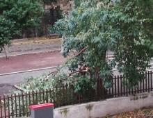 Roma: venti di tempesta a 100 km orari, le foto nel quartiere
