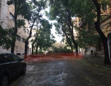 Via Pozzuoli chiusa per albero caduto