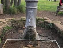 Caffarella: tanta buona volontà e la fontanella torna fruibile