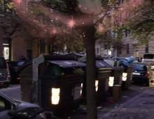 Via Collazia: alberi addobbati per il Natale