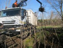 Caffarella: intervento del Servizio Giardini per rimuovere rifiuti che ostruivano l'Almone
