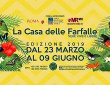 Via Appia Pignatelli: torna la casa delle Farfalle