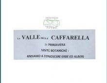 Visite Botaniche In Caffarella