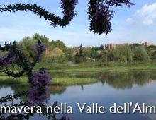 Caffarella: Primavera nella valle dell'Almone