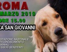Il 31 marzo 2019 gli animalisti a piazza San Giovanni in Laterano