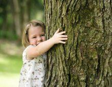 LA NOTA / La Giornata internazionale delle foreste