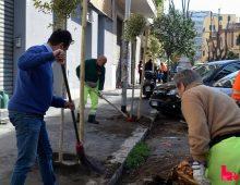 Progetto ReTree: si parte da via Iberia per i primi 41 alberi da piantare