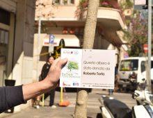 ReTree Porta Metronia: l'albero donato da Roberto
