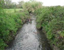 Caffarella: ripuliti dai rifiuti 200 metri di sponde del fiume Almone