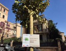 ReTree Porta Metronia: le parole di chi ha donato un albero alla comunità