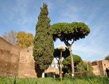 Porta Metronia: Camminata archeologica lungo le Mura